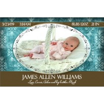 Newborn Baby Birth Announcement 4 (blue)